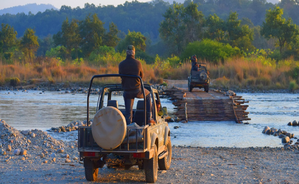Activities to do in Jim Corbett National Park