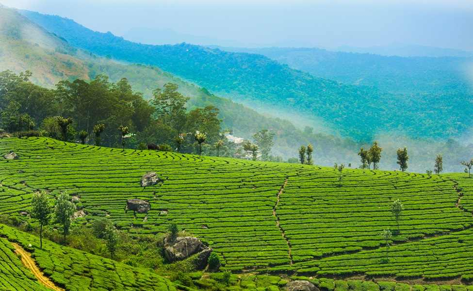 Kerala Romantic Tour