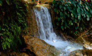 Verna Springs