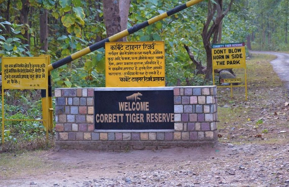 Jim Corbett Park Safari Gate
